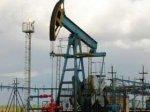 Цена на нефть в мире упала до 50 долларов