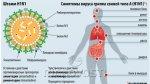 ВОЗ повысила уровень угрозы пандемии свиного гриппа с 4 до 5
